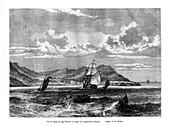 Cap Tiburon, Haiti, 19th century