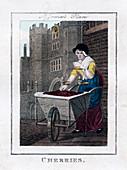 Cherries', St James's Palace, London, 1805