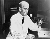 Oswald Theodore Avery, American bacteriologist
