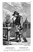 Gardener smelling a carnation or pink (Dianthus), c1750