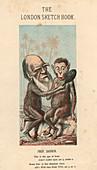 Charles Darwin, English naturalist, 1874