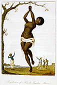 Flagellation of a Female Samboe Slave', 1793