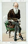 Charles Darwin, English naturalist, 1871