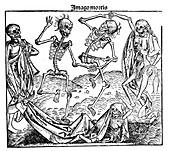 Death triumphant, 1493