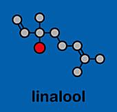 Linalool scent molecule
