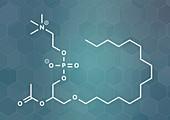 Platelet Activating Factor signaling molecule