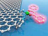 Luminescent graphene-based material, illustration