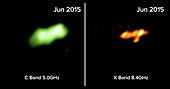 Star destroyed by black hole, radio images