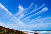 High level cirrus clouds over Florida