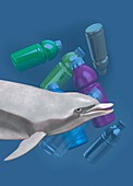 Dolphins and pollution, illustration