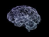 Brain shaped network, illustration