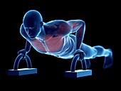 Man doing push-ups, illustration