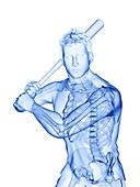 Baseball player's skeleton, illustration