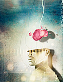 Brain above human head, illustration
