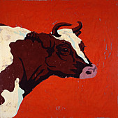 Hereford cow, illustration