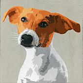 Jack Russell Terrier dog, illustration