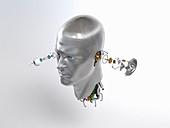 Male robot head, illustration