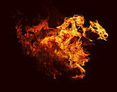 Flames in shape of racehorse and jockey, illustration