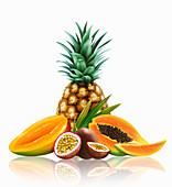 Range of fresh tropical fruit, illustration