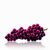 Bunch of red grapes, illustration