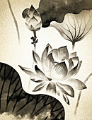 Frog climbing ornate lily flowers, illustration