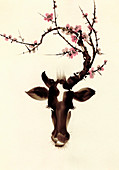 Blossom branches growing from cow's head, illustration