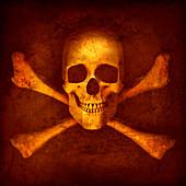 Skull and crossbones, illustration