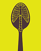 Skeleton of ribs and spine on spoon, illustration