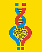 Question marks around cells forming DNA, illustration