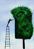 Man on ladder trimming tree, illustration