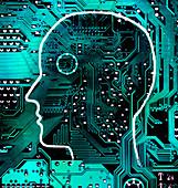 Man's head over circuit board, illustration