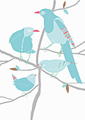 Birds with patterns perched on branches, illustration