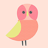 Owl, illustration