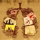 Branches of bare trees forming human lungs, illustration
