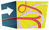 Contrasting straight and tangled paths, illustration