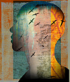 Birds flying inside of man's head, illustration