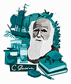Charles Darwin, English naturalist, illustration