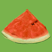 Close up slice of watermelon, illustration