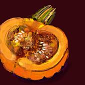 Close up of half pumpkin, illustration
