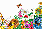 Butterflies and bees on bright garden flowers, illustration