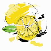 Whole and cut lemon, illustration