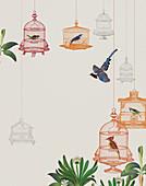 Birds in birdcages, illustration
