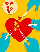 Stem cells mending heart, conceptual illustration