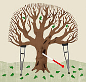 Sick oak tree, illustration