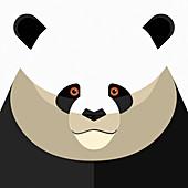 Panda, illustration