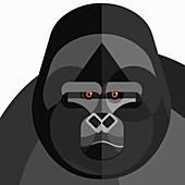 Gorilla, illustration