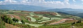 Agricultural landscape, Yunnan, China