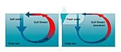 Gulf Stream disruption, illustration
