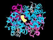 Haemoglobin, molecular model