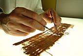 Artemidorus papyrus restoration